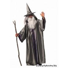 Kostým Čaroděj I
