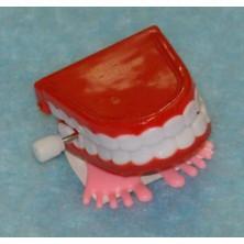 Skákací zuby